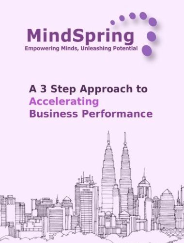 3_step_aaproach_business_performance400x566